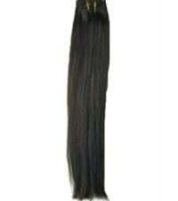Natural Brown Clip-ins